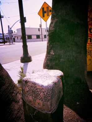 Fashioned around an old Santa Fe railroad post imbedded between three palms on Figueroa Street.
