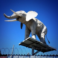 HLP has rooftop lions, HP has an elephant.