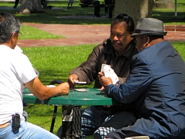 Playing cards in the park.